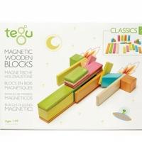 Tegu blocs en bois magnetiques 24 pcs