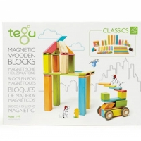 Tegu blocs en bois magnétiques 42 pcs