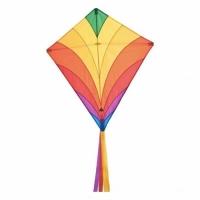 Cerf volant rainbow